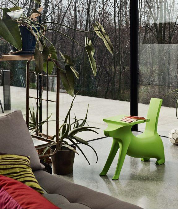 magis me too le chien savant verde